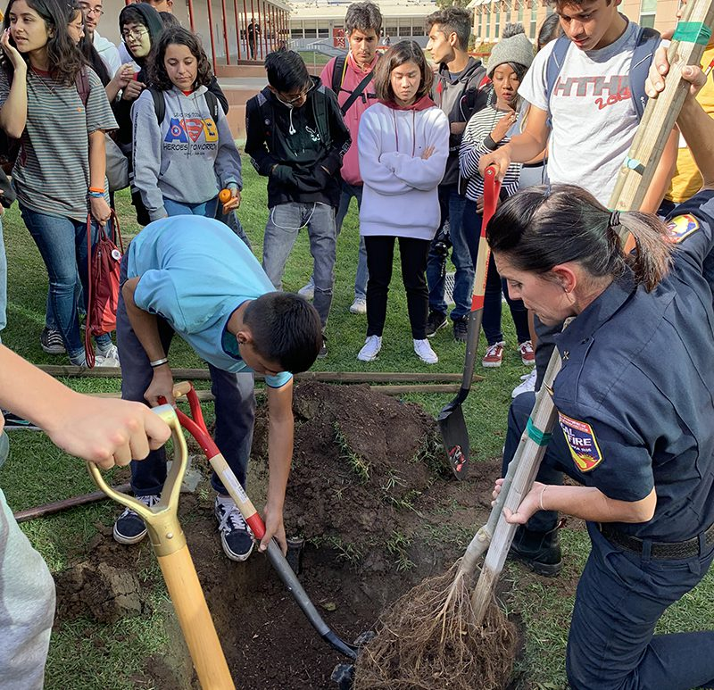 Sweetwater High School Celebrates Value of Trees with Tree Planting Event