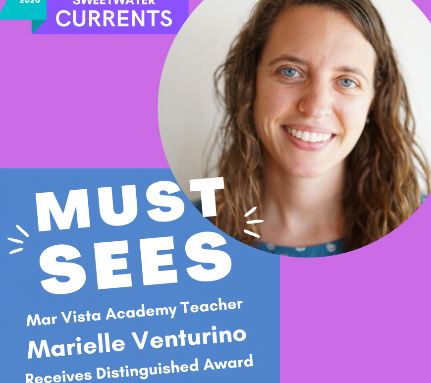 Mar Vista Academy Teacher Receives Distinguished Award and is Headed to the Netherlands